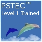 pstec level 1 exam